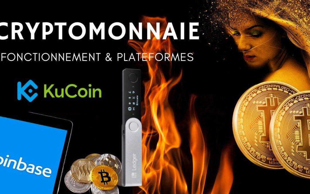 Tout savoir sur les Cryptomonnaies